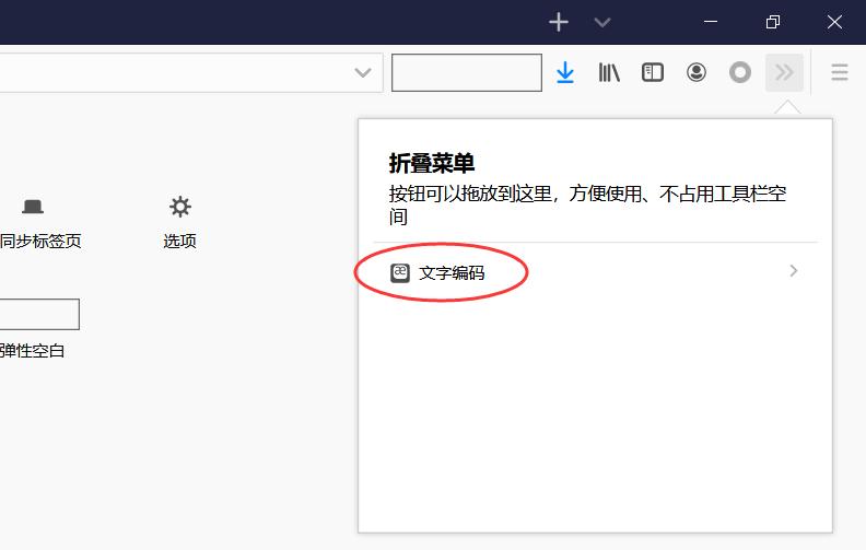 Firefox火狐浏览器设置字符编码格式(解决查看源代码出现乱码问题)
