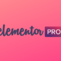 WordPress 页面构建插件 Elementor Pro v3.0.6 激活所有功能 (最新版)持续更新