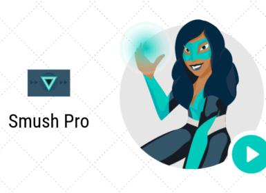 WordPress 图像优化插件: Smush Pro v3.9.0 (最新版) 持续更新
