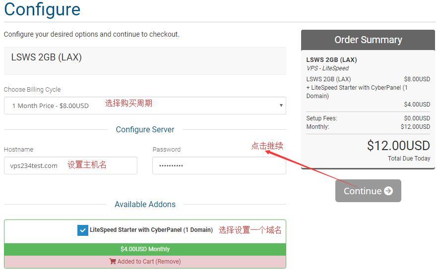 选择 iozoom LiteSpeed VPS 配置选择
